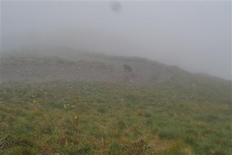 TRAIL di PIZZO San Michele N°3157 FOTO scattate a raffica in VETTA da Peppe Dalessio con nebbia e gran freddo - foto 376