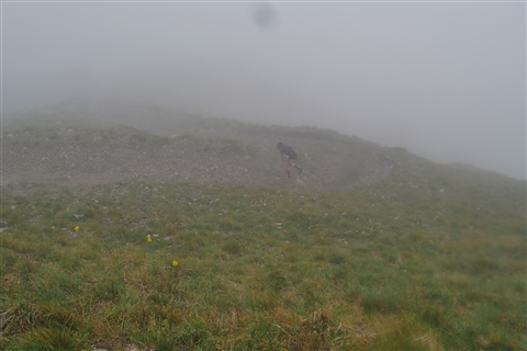 TRAIL di PIZZO San Michele N°3157 FOTO scattate a raffica in VETTA da Peppe Dalessio con nebbia e gran freddo - foto 377