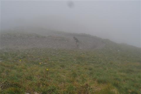 TRAIL di PIZZO San Michele N°3157 FOTO scattate a raffica in VETTA da Peppe Dalessio con nebbia e gran freddo - foto 378