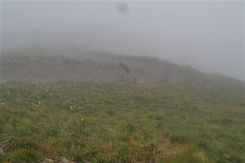 TRAIL di PIZZO San Michele N°3157 FOTO scattate a raffica in VETTA da Peppe Dalessio con nebbia e gran freddo - foto 381