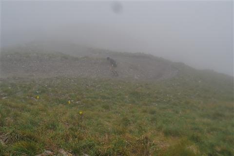 TRAIL di PIZZO San Michele N°3157 FOTO scattate a raffica in VETTA da Peppe Dalessio con nebbia e gran freddo - foto 384