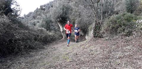 Trail del GRIFONE ....Borgo medievale di Terravecchia -Giffoni 18 novembre 2018- - foto 54