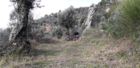 Trail del GRIFONE ....Borgo medievale di Terravecchia -Giffoni 18 novembre 2018- - foto 57