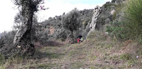 Trail del GRIFONE ....Borgo medievale di Terravecchia -Giffoni 18 novembre 2018- - foto 58