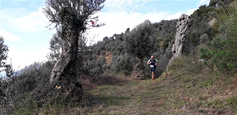 Trail del GRIFONE ....Borgo medievale di Terravecchia -Giffoni 18 novembre 2018- - foto 64