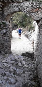 Trail del GRIFONE ....Borgo medievale di Terravecchia -Giffoni 18 novembre 2018- - foto 80