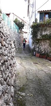 Trail del GRIFONE ....Borgo medievale di Terravecchia -Giffoni 18 novembre 2018- - foto 141