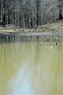 """I° Trail """"La Dama del Lago"""" 24 marzo 2019 Sanpotito Sannitico - foto 24"""