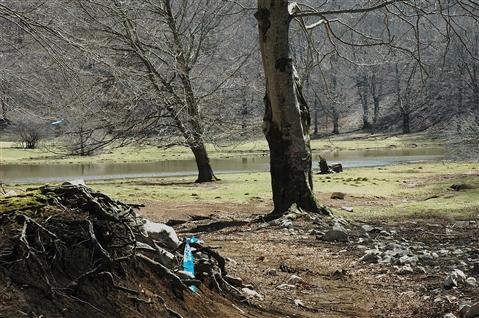 """I° Trail """"La Dama del Lago"""" 24 marzo 2019 Sanpotito Sannitico - foto 36"""