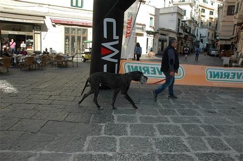 Trail delle Ferriere 31 marzo 2019 Amalfi Coast - foto 643