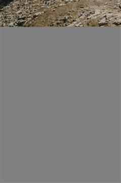 Positano Agerola Vertikal   6 settembre 2020 - foto 168