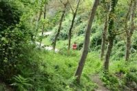 """ARRIVI del Trail di Pizzo San Michele e Caggiana Trail  Foto by """"Tommaso Vietri"""" - foto 24"""